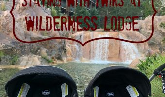 WILDERNESS LODGE WITH THE TWINS