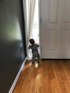 baby looking outside