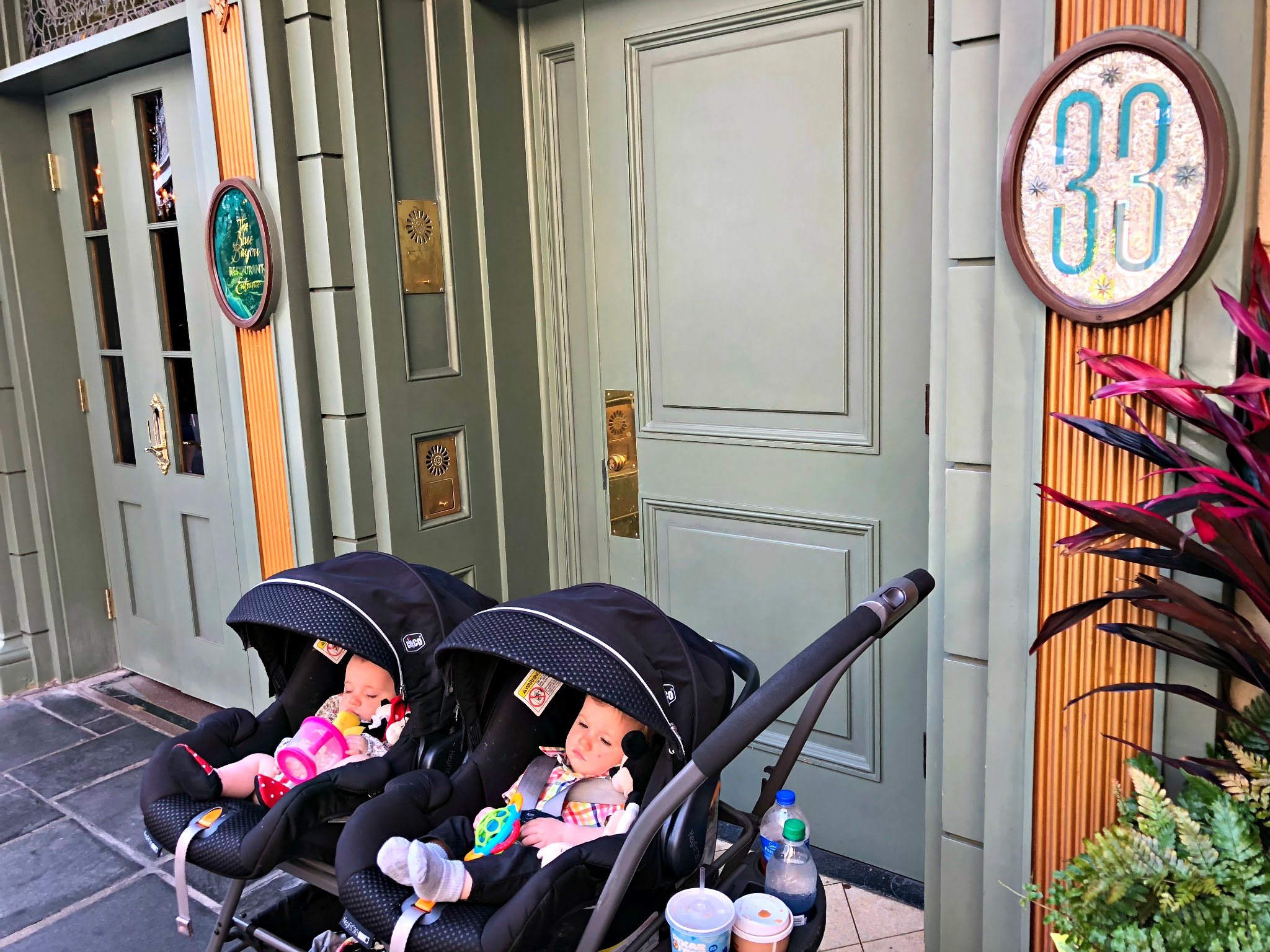 twin babies in New Orleans square